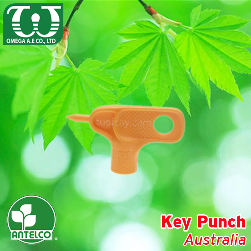 Key Punch 4mm - Australia